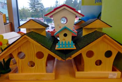 KZ-Celje - hranjenje ptic